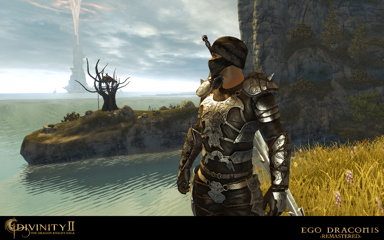 Divinity  Dks Character Builds