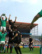 rugby-world-cup-2011-2.jpg