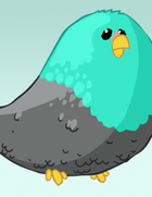 Day1_Bird-734917.png